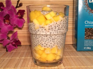 Powerfood Chiapudding Mango Honig