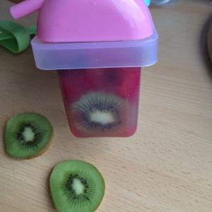 Wassereis Popsicles Früchte vegan selbst gemacht